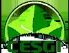 cesgi logo